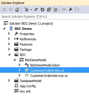 Add Customer Order Entity Class